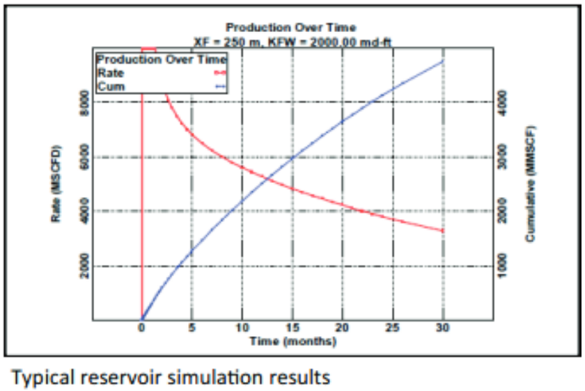 Typical Reservoir Simulation Results